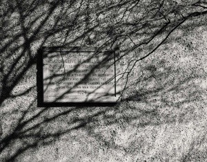 War Memorial shadows by Carol Ireland